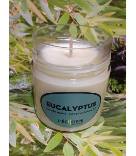 Bougie parfumée à l'eucalyptus (cire végétale)